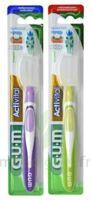 Gum Activital, Souple à TOULOUSE