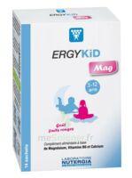 Ergykid Mag Poudre Solution Buvable 14 Sachets à TOULOUSE