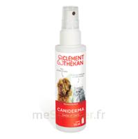 Clément Thékan Caniderma Solution Externe Cicatrisant Spray/125ml à TOULOUSE